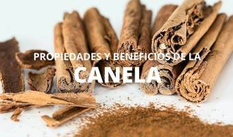 Propiedades de la Canela, Origen y Características Medicinales