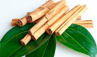 ¿Para qué sirve las hojas de laurel con canela? Descubre la respuesta
