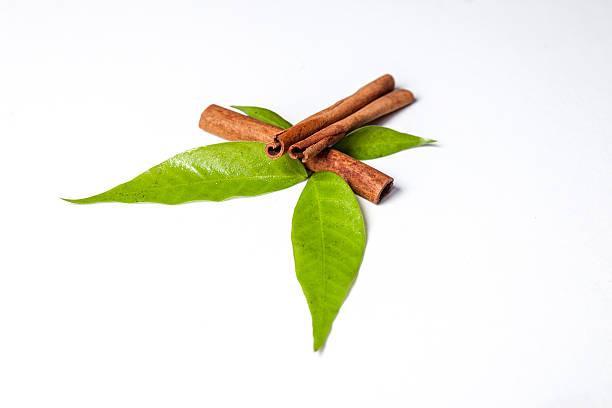 Beneficios de la canela y el laurel