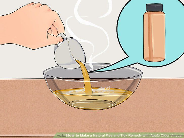 Remedios naturales para las garrapatas