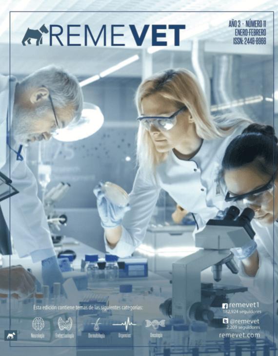 remevet-revista-011