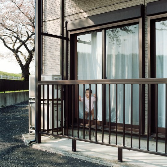 a baby looking out from a house that is a long the tama river. april 2014.