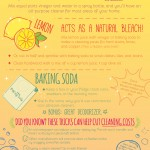Spring Cleaning Infographic