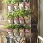 Shoe-Organizer-Herb-Garden-Vertical