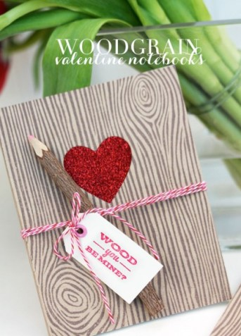 Need something a little creative for your guy this Valentine's? Get creative and whip up one of these 20 DIY Valentines for Guys - tipsaholic, #valentines #valentinesday #DIY #valentine's
