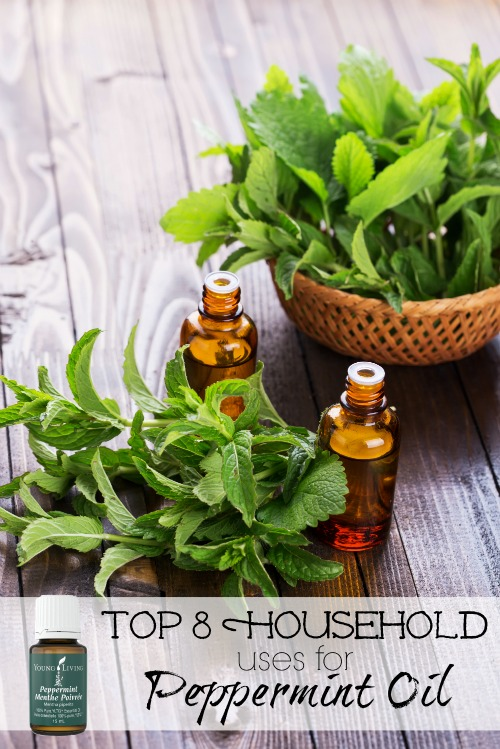 Add these uses for peppermint oil to your home maintenance checklist and give your house a natural boost. Top 8 Household Uses for Peppermint Oil via @tipsaholic #peppermint #oils #youngliving #essentialoils #peppermintoil