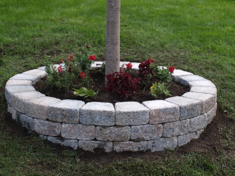 5 front yard landscaping