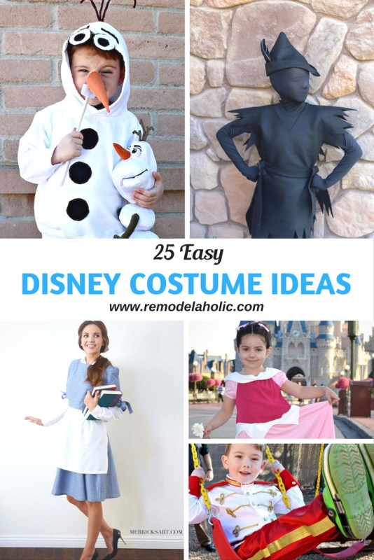 Cute Homemade Chicken Coop Remodelaholic | 25 Easy Disney Costume Ideas