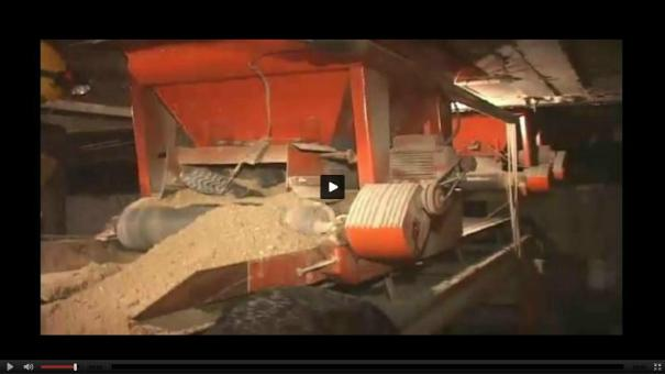 "21 Máquina de arena ""se chupa"" un hombre, pero sobrevive [Video]"