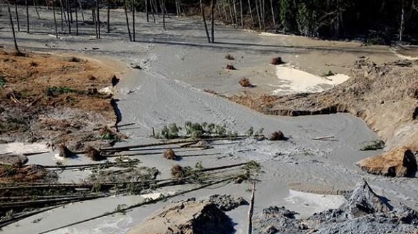 52e63a94755d7aabbd2f49ac66e793e7 article Estudio de 1999 predijo el deslizamiento en Washington