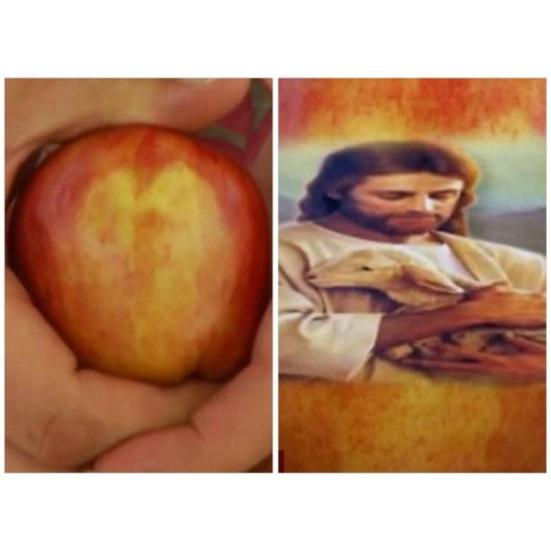 image131 Hombre afirma ver a Jesús sosteniendo un cordero en manzana