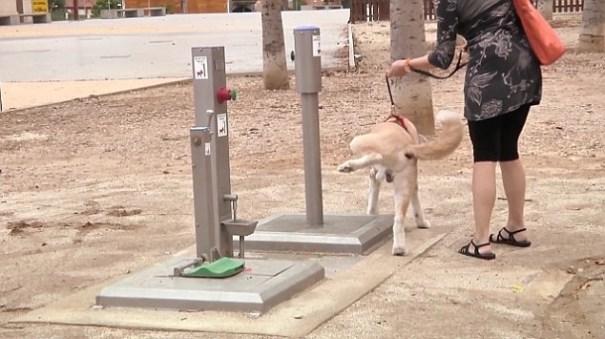 image83 Instalan el primer baño público para perros en España