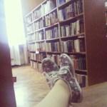 libray Baja a 70% la asistencia a bibliotecas [Santiago]