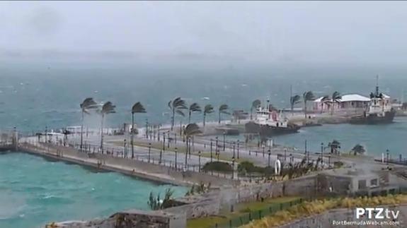 Bermuda-Gonzalo-Live