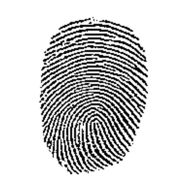 2327808306 44d1c0e3ed z Hackers ya pueden clonar huellas dactilares