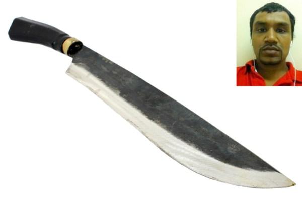 machete0129 Tipo amenazó a policías con un machete y Nueva York le pagó por ello.