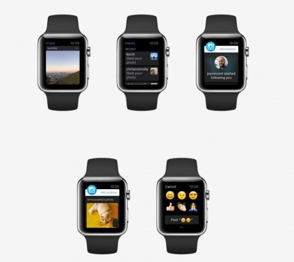 captura 394 730x648 Versión de Instagram pa Apple Watch
