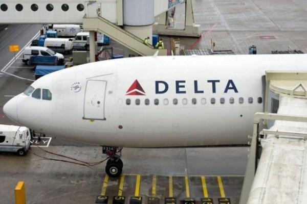 image221 Perro detecta en JFK 24 libras cocaína, heroína en dos vuelos procedentes RD