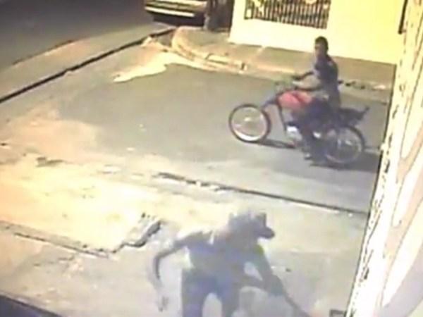 image292 Video   Cuando delincuentes matan un hombre (SD)