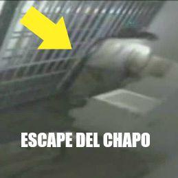 escape CAHPO