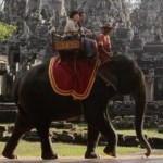 elefante Elefante mata guardián y sale juyendo con turistas [Tailandia]