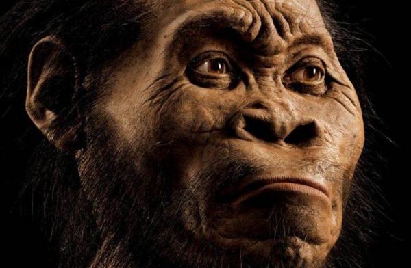 homo naledi Conoce al nuevo pariente de los humanos