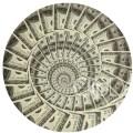 dollars dinero Grupito con casi to lo cuarto$ del mundo