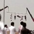 as Video   El horror de la vida diaria en Arabia Saudita