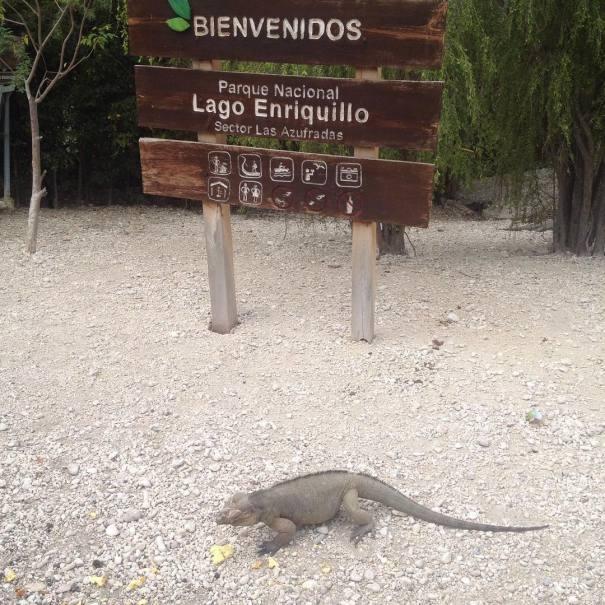 lago enriquillo 1 Rincones chulos de Quisqueya: Bahoruco