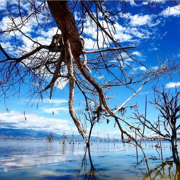 lago enriquillo 3 Rincones chulos de Quisqueya: Bahoruco