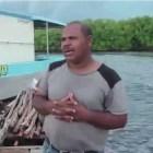 pesacdores Denuncian destrucción de manglares en Manzanillo