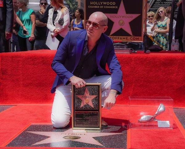 pi Pitbull recibe estrella en el Paseo de la Fama de Hollywood