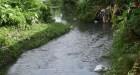 Río de Moca