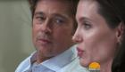 brad pitt Divorcio temporal: Brad Pitt y Angelina Jolie