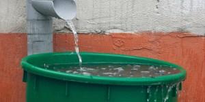rain OJO   Lluvias provocarán brotes de leptospirosis, dengue y cólera