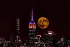 superluna Así se vio la superluna de octubre (fotos)