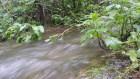 rio Valle Nuevo: Sigue recuperación ríos secuestrados