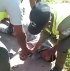amet AMET ordena tratar bien a guardias y policías