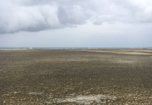 las terrenas 2 Las Terrenas: ''sin terremoto no hay tsunami''