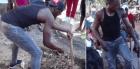 usain bolt Usain Bolt cava la tumba de su pana (video)