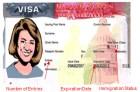 visa f 1 ¿Puedes llevarte a tu esposa/o si tienes visa de estudiante?
