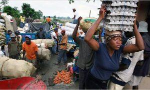 haitianos-quieren-comprar-los-huevos-y-pollos-en-pais-porque-alla-son-mas-caros-f29dd7c090f4169a0e96487384def63e