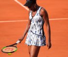 Venus Williams 300x252 Venus Williams mató a un hombre de 78 años en un accidente