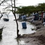 carbon 150x150 El problema del tráfico de carbón hacia Haití