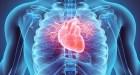 ¿Cuántas veces late el corazón en un día?