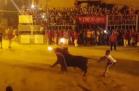 Toro 300x197 Toro se suicida al prenderle fuego los cuernos