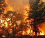 incendio forestal 150x126 Incendio forestal achicharra zona boscosa en Sierra de Bahoruco