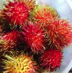 ra 150x151 RD   Una fruta rara a la que atribuyen propiedades curativas