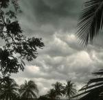 """tormenta 150x145 La dio anemia a la tormenta """"Harvey"""""""