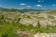 Trail 从 Harry's Ridge 的西面绕上去,这是向西方向的景色。